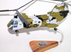 HMM-268 Red Dragons CH-46 model