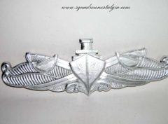 Surface Warfare Pin (silver)