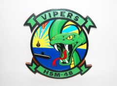 HSM-48 Vipers Plaque