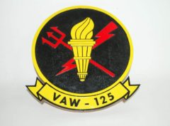 VAW-125 Torch Bearers Plaque