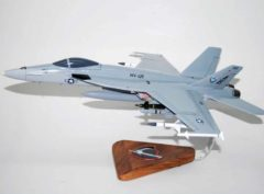 VFA-136 Knighthawks F/A-18E Model