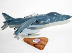 VMM-365 Blue Knights (REIN) AV-8B Harrier Model