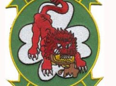 HMM-363 Red Lions Patch – Plastic Backing