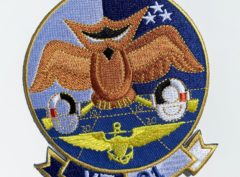 VT-31 Wise Owls Squadron Patch