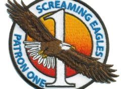 VP-1 Screaming Eagles Squadron Patch – Sew On