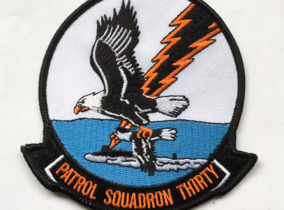 VP-30 Pro's Nest Squadron Patch – Plastic Backing
