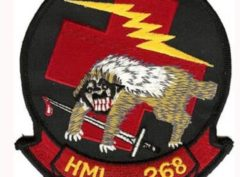 HML-268 Patch – Plastic Backing