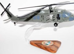 2-211th Aviation Regiment (United States) UH-60 Black Hawk Model