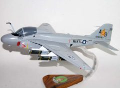 VA-65 Fighting Tigers (1980) A-6 Model
