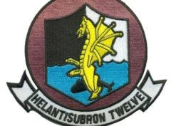 HS-12 Wyverns Squadron Patch – Plastic Backing