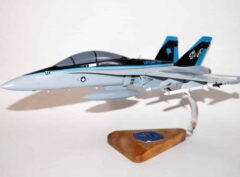 VMFA(AW)-225 Vikings (CE01) F/A-18D Model