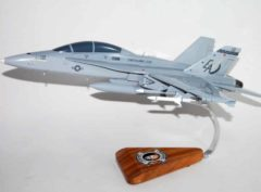 VMFA(AW)-332 Moonlighters F/A-18D Model