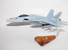 VFA-31 Tomcatters F/A-18E (AJ/101) Model