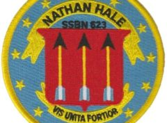 USS Nathan Hale SSBN-623 – Plastic Backing