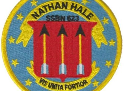 USS Nathan Hale SSBN-623 – Plastic Backing