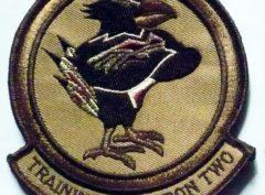 VT-2 Doerbirds (Tan) Squadron Patch– Plastic Backing