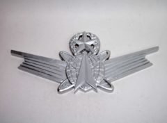 Master Space Operations Badge