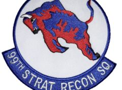 99th Strategic Reconnaissance Squadron Patch – Sew On