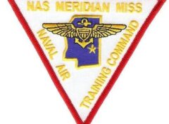 NAS Meridian Patch – Sew On