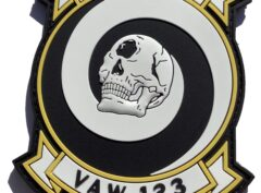 VAW-123 Cyclops Squadron Patch – Hook and Loop