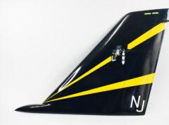 VF-124 Gunfighters F-14 Tomcat Tail
