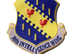 70th Intelligence Wing Patch – Plastic Backing
