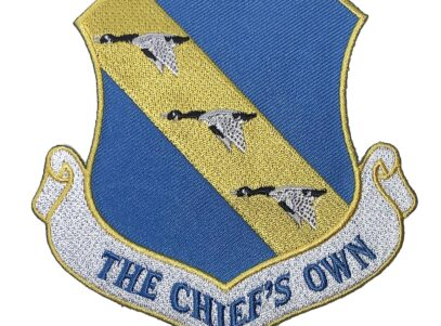 11th Wing Patch