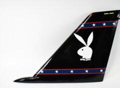 VX-9 Det Point Mugu F-14 Tailflash