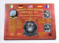 SPMAGTF Crisis Response 20.2 Plaque