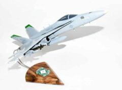 VMFAT-101 Sharpshooters 2019 F/A-18C Model