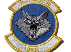 175th Fighter Squadron Patch