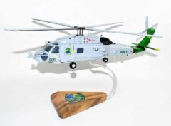 HSM-48 Vipers 2019 MH-60R Model