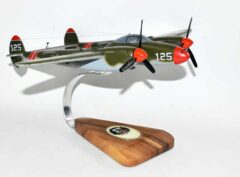 80th Fighter Squadron, 8th Fighter Group Maiden Head P-38H Model
